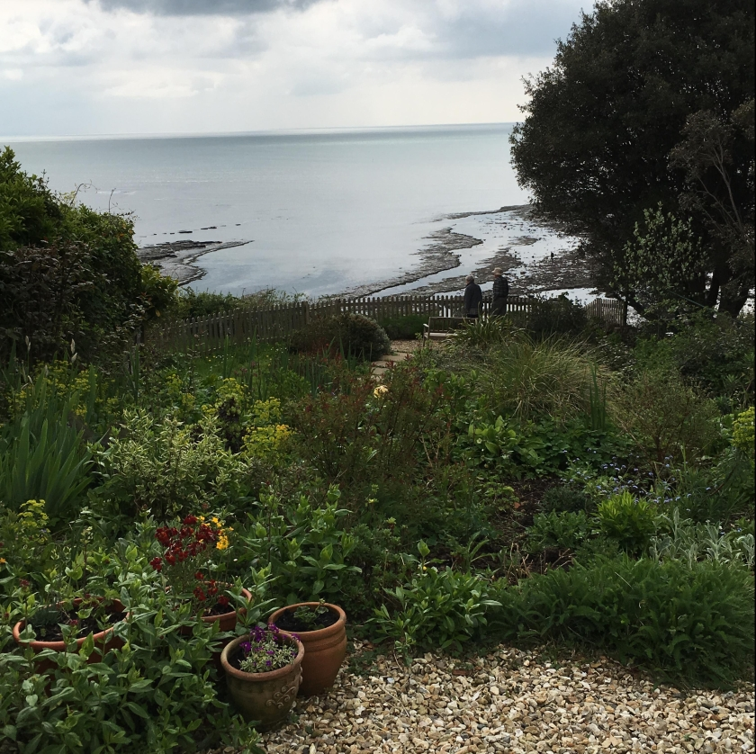 View of back garden at Lyme Regis house