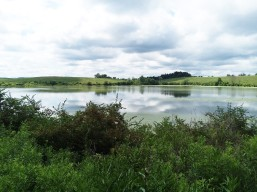 To this concluding view of the pond, and across it to a hill, from which the succeeding 360-degree view was taken.